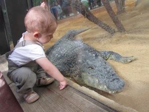 Nicolás y cocodrilo